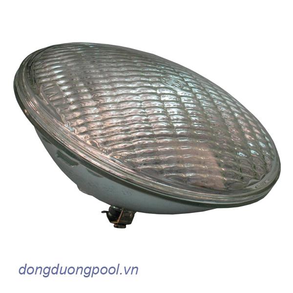 den-100w-12v