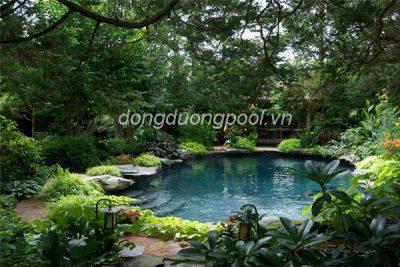 Mẫu hồ bơi sân vườn đẹp nhất