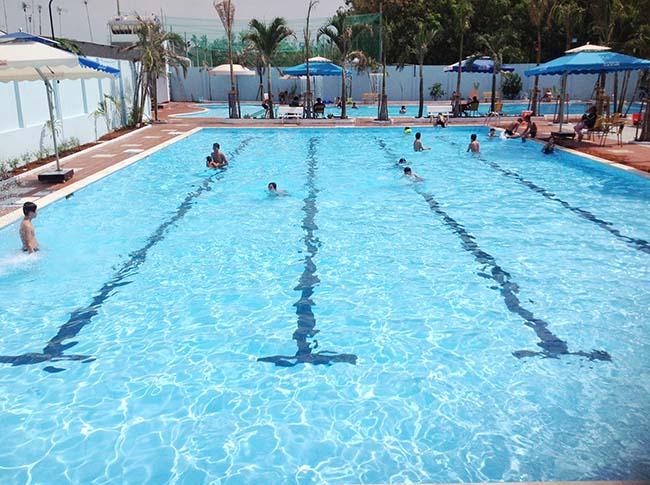 Thực trạng thị trường thiết kế bể bơi
